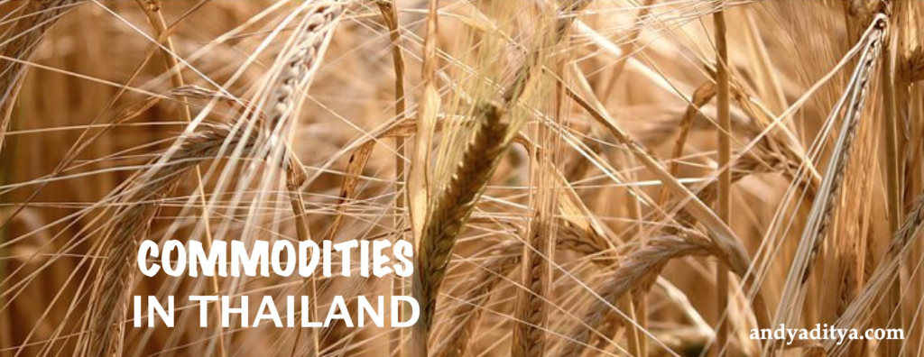 Ideas for startups in Commodities in Thailand